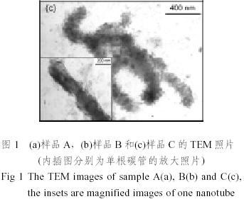 碳纳米管/聚苯胺/钴复合物的制备及其微波吸收特性